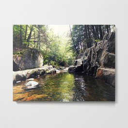 Walking Through the Cascades Metal Print