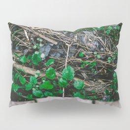 Forest Boardwalk Pillow Sham