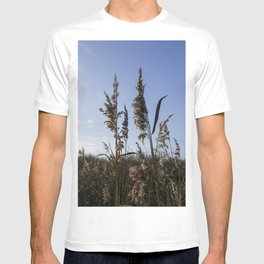 Reed plumes T-shirt