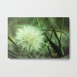 Puffy Day Metal Print