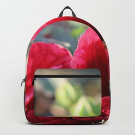 Kingdom Of Red Backpack