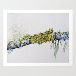 Green Lichen Art Print