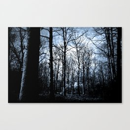The Haunted Wood  Canvas Print