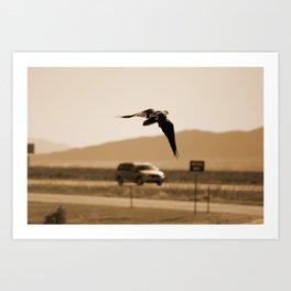 Raven Flying in Sepia Art Print
