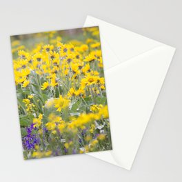 Meadow Gold - Wildflowers in a Mountain Meadow Stationery Cards