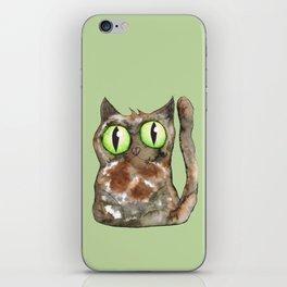 Tortoiseshell cat iPhone Skin