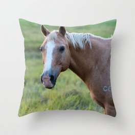 Silver III Throw Pillow