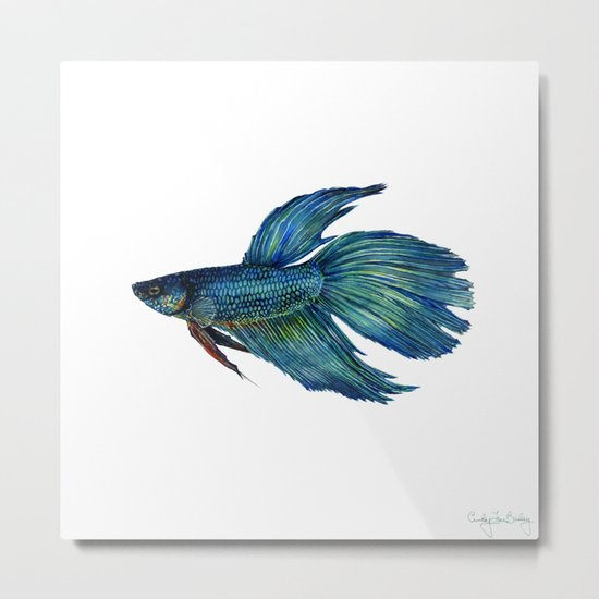 Mortimer the Betta Fish Metal Print