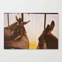 ass Canvas Prints featuring Ass by meredith cohen
