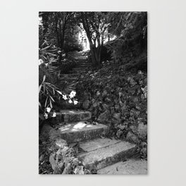Secret Garden Canvas Print
