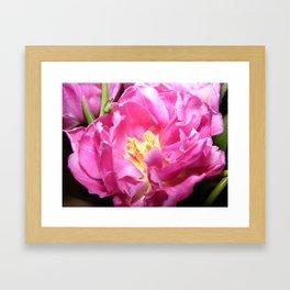 Pink Teacup Framed Art Print