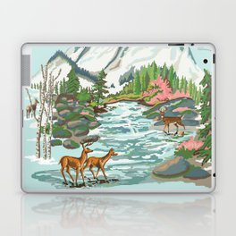 Paint by Number Mountain Medow Laptop & iPad Skin