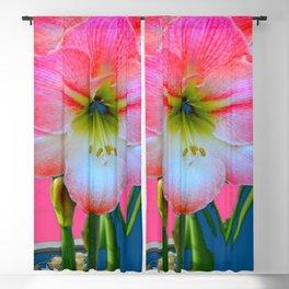 ABSTRACT PINK-WHITE AMARYLLIS  FLOWER GARDEN ART Blackout Curtain