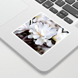 Magnolia 5 Sticker