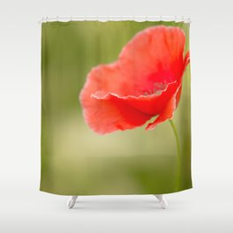 Miss you so much Red Poppy #decor #society6 Shower Curtain