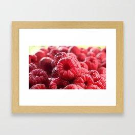 Raspberry day Framed Art Print