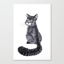 Thomas the Cat Canvas Print
