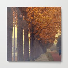 Autumn scenery #2 Metal Print