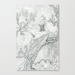 Staring Canvas Print