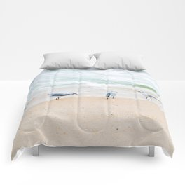 Beach Birds Comforters