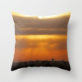 Vastnesses of Africa - Morning time Throw Pillow