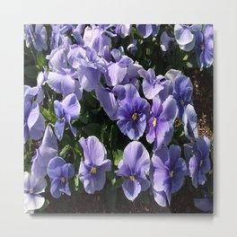 Viola Blue Floral Metal Print