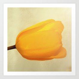 Bright Yellow Tulip Art Print