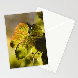 Autumn Grape Leaf Stationery Cards