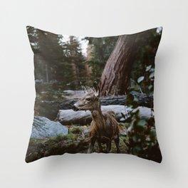 Sequoia Forest Deer Throw Pillow