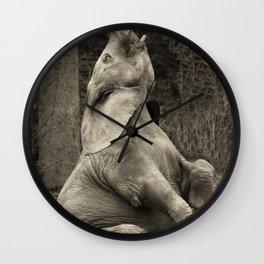 sitting elefant Wall Clock