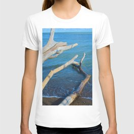 Lake Erie from Point Pelee National Park, Canada T-shirt
