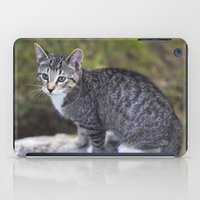 hiking iPad Cases featuring Hiking Friend by Jeffrey Filman