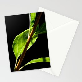 Leaf and Sun Stationery Cards