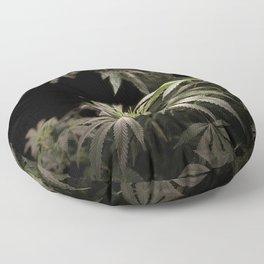 Shining in Black Floor Pillow