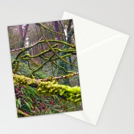 Green Burst Stationery Cards