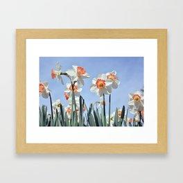 Nature Field Flowers Framed Art Print