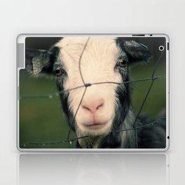 The Goat II Laptop & iPad Skin
