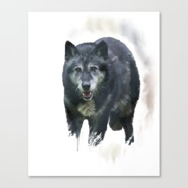 Timber Wolf watercolor painting Canvas Print