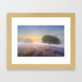 Misty morning in Posbank - Netherlands Framed Art Print