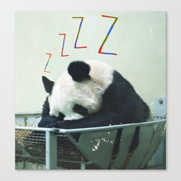 Sleepy Panda Canvas Print