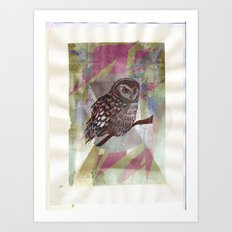 Bird Screenprint Art Print