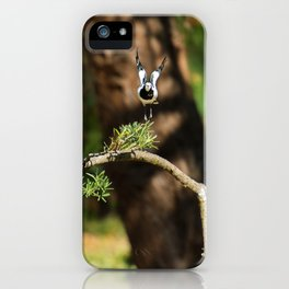 Magpie Lark also known as a Pee Wee iPhone Case
