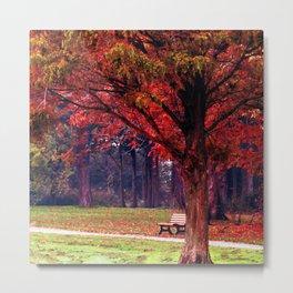 Autumn scenery #10 Metal Print