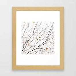 Snowy birch twigs and leaves #society6 #decor #buyart Framed Art Print