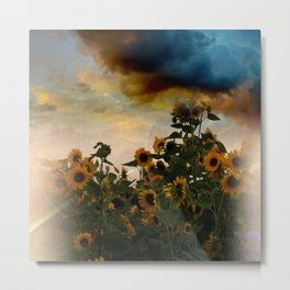 sunflowers and clouds -2- Metal Print