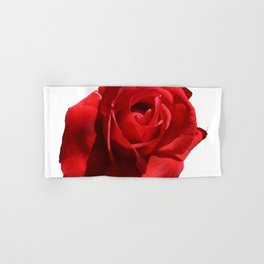 Red Rose Isolated Hand & Bath Towel