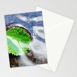 Mountain creek - birch leaf Stationery Cards