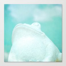 Frog and Clouds Canvas Print