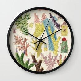 Great Barrier Reef Corals, Nautical, Coastal, Ocean, William Saville-Kent Wall Clock