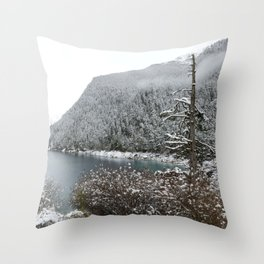 Winter wilderness Throw Pillow